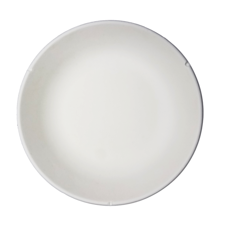 Wholesale tray plate eco friendly plates HENGDA Disposable Tableware Brand