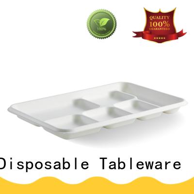 HENGDA Disposable Tableware bagasse eco friendly plates customization for snack