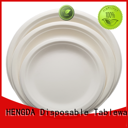 new-arrival eco disposable plates compostable from China for party