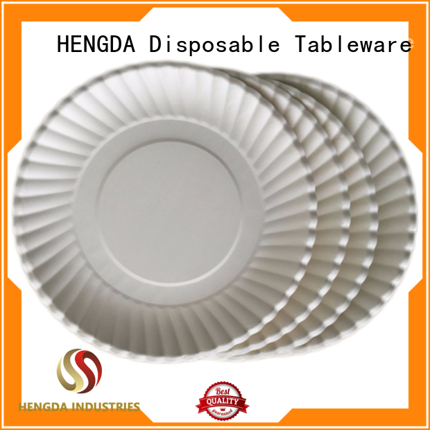 cost effective strong paper plates plates customization for food festival